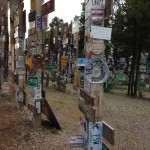 Sign Post Forest - a view to try to show its depth
