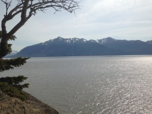 the view from Beluga Point, a mountain over the inlet
