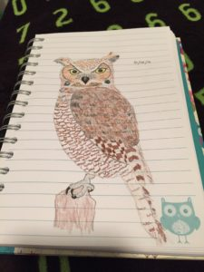 A hand drawing of a great horned owl